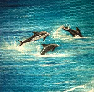 Picture of Dolphins
